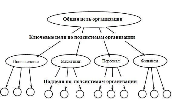 организация и цели
